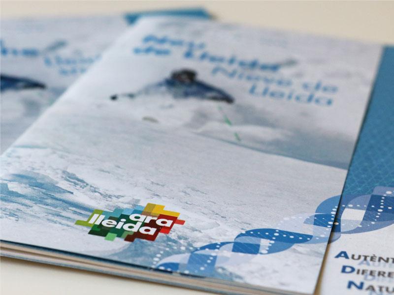 Edició Guia Neu de Lleida
